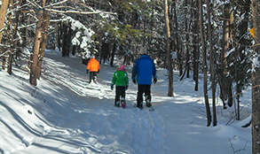 Snowshoeing & Cross Country Skiing